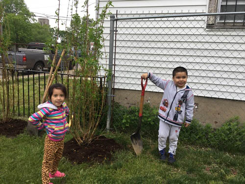 Students enjoyed the chance to plant a tree at their center!