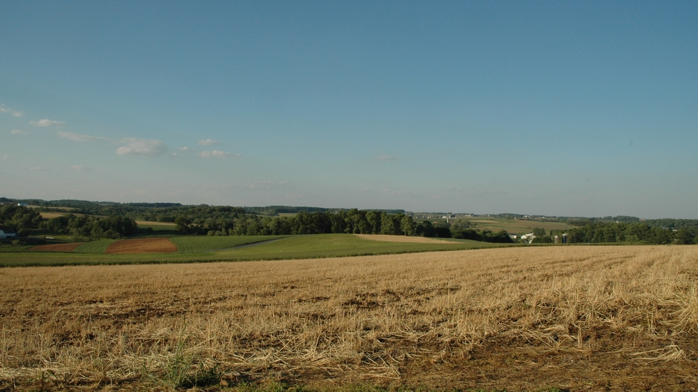 20060520_Farmland_012.JPG