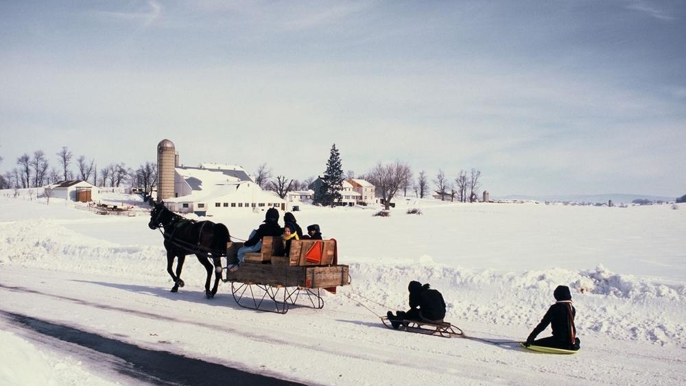 20120606_horse_drawn_sleigh_300dpi-TerryRoss.jpg