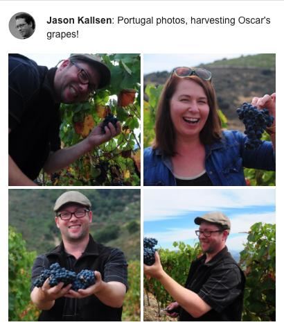 Jason Wine Harvest Pic.png