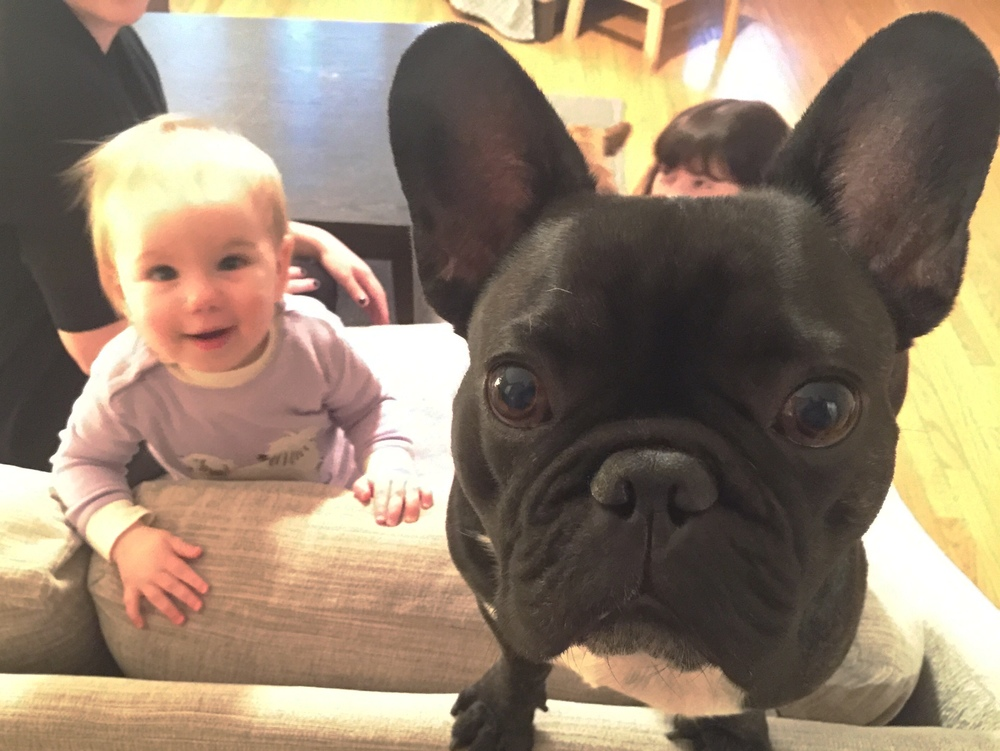 Anyhoozle, I like it when Baby Brooklyn comes to visit 'cuz her brainmelon smells nice, plus we both like to put yummysummies in our bellies, plus chewerate on stuff, plus we both luvluvlove our AUNTIE S!! ...............