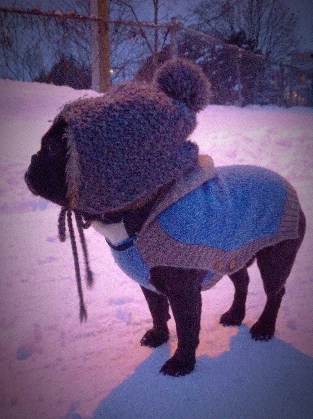 For my firstest Freezy Wintertimes, I wore my BLOO sweatershirt plus Mum's fuzzy mitten on my brainmelon!!