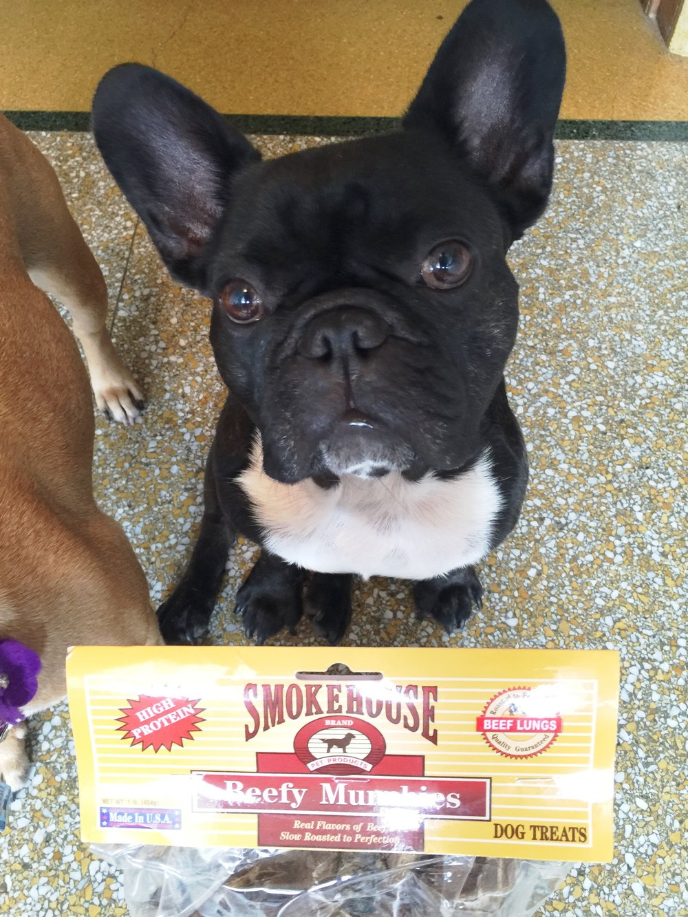 """AWESOMETIMES!! SAYS RIGHT ONNIT """"DOG TREATS""""!!"""
