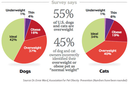 Click to visit the Association for Pet Obesity Awareness website!!