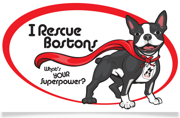 To enter, Click the logo and visit the contest page on bostonterrierrescuecanada.com