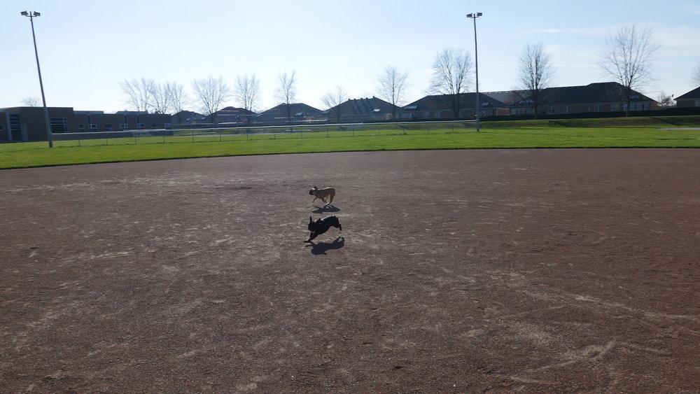 Me plus Mirabelle doing crazybananas zoomers on the baseballery field!! Ha ha!!