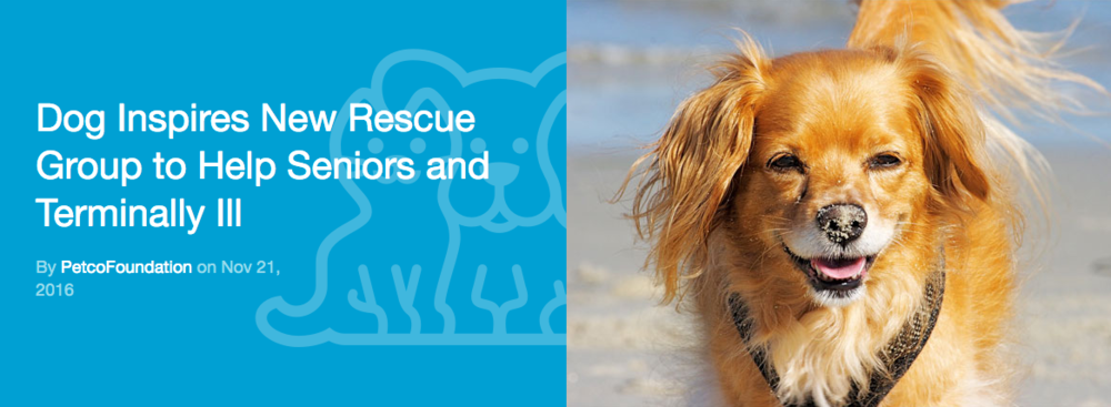 Click to read more about PEACE OF MIND DOG RESCUE