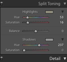 Split Tone