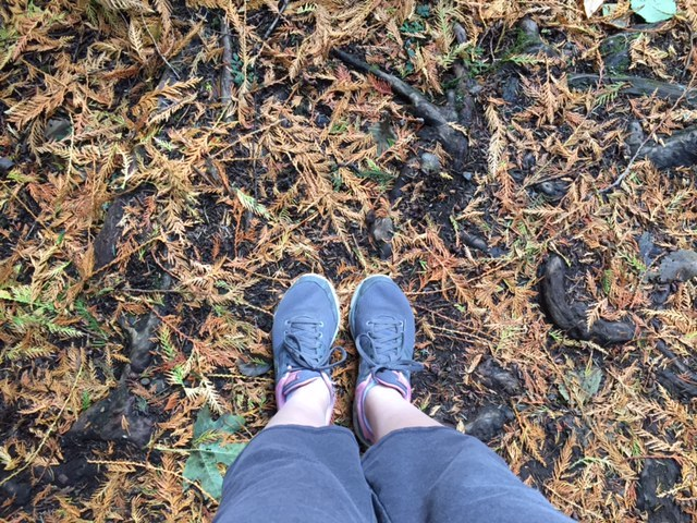 One of my trusty tools in my arsenal: taking long ass walks/hikes wherever I may be. Not only do I get to check out the surrounding areas but it is my #1 decompression method when I need to get some perspective! As you can see, it's autumn in the Pacific Northwest.