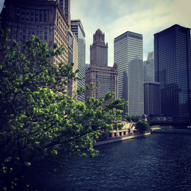 The Chicago River -- on the far right side of this skyline is the Trump International Tower, and I just couldn't stomach having it be included in this photo. Talk about an eyesore.