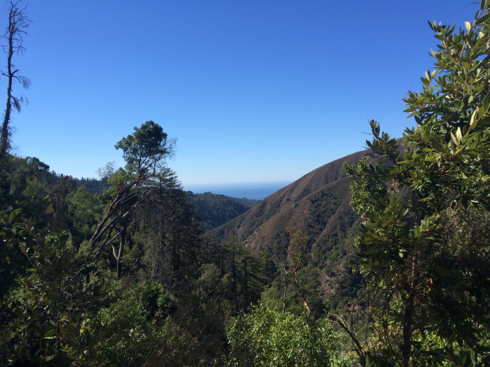 Pine Ridge Trail - A view to the ocean with several miles still to hike.