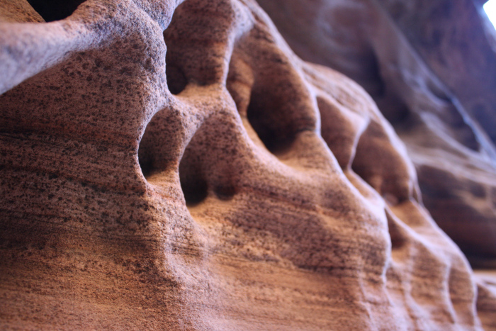 Unique erosion sculptures in the side-canyons of Zion.