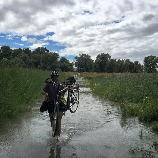 Unexpected water crossing...this local guy Wolfgang made me feel comfortable about taking the plunge #rivercrossing #biketouring #donauradweg