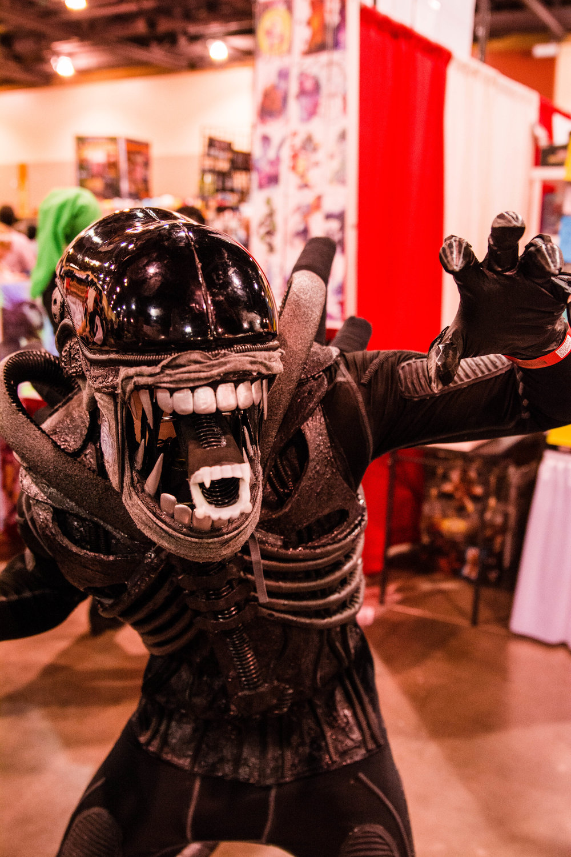 Phoenix Comic Fest-26.jpg