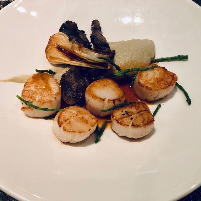 Coquilles St. Jacques #paleo ⠀⠀⠀⠀⠀⠀⠀⠀⠀⠀⠀⠀ ⠀⠀⠀⠀⠀⠀⠀⠀⠀⠀⠀⠀ ⠀⠀⠀⠀⠀⠀⠀⠀⠀⠀⠀ ⠀⠀⠀⠀⠀⠀⠀⠀⠀⠀⠀⠀ ⠀⠀⠀⠀⠀⠀⠀⠀⠀⠀⠀⠀ ⠀⠀⠀⠀⠀⠀⠀⠀⠀⠀⠀ ⠀⠀⠀⠀⠀⠀⠀⠀⠀⠀⠀⠀ ⠀⠀⠀⠀⠀⠀⠀⠀⠀⠀⠀⠀ ⠀⠀⠀⠀⠀⠀⠀⠀⠀⠀⠀ ⠀⠀⠀⠀⠀⠀⠀⠀⠀⠀⠀⠀ #acolorstory #iamatraveler #liveauthentic #girlslovetravel #digitalnomadgirls #ladiesgoneglobal #sheisnotlost  #parisjetaime #francophile #parisiancharm  #paleogfparis #paleo #glutenfree #paris #paleojone #healthy #eatclean  #eatmoreplants #sugarfree #glutenfree  #palæo #plantbased #instafit #nutrition  #bosslady #girlboss #keto #paleoparis #cleaneating
