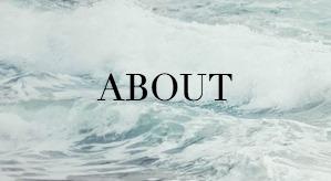 About | Kayla Hollatz