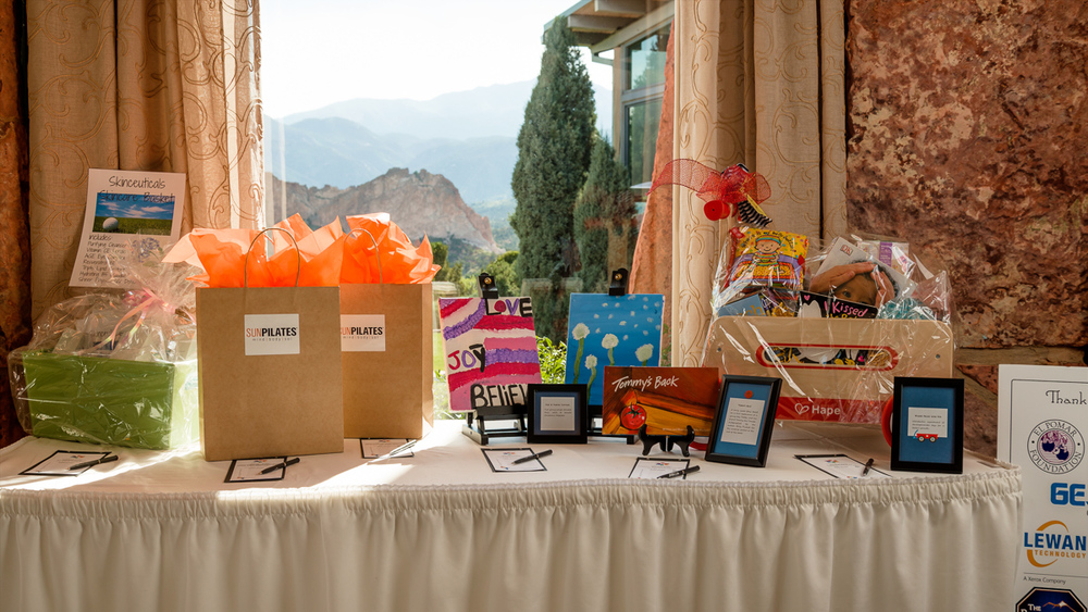 Children's Hospital Foundation Silent Auction, 2016