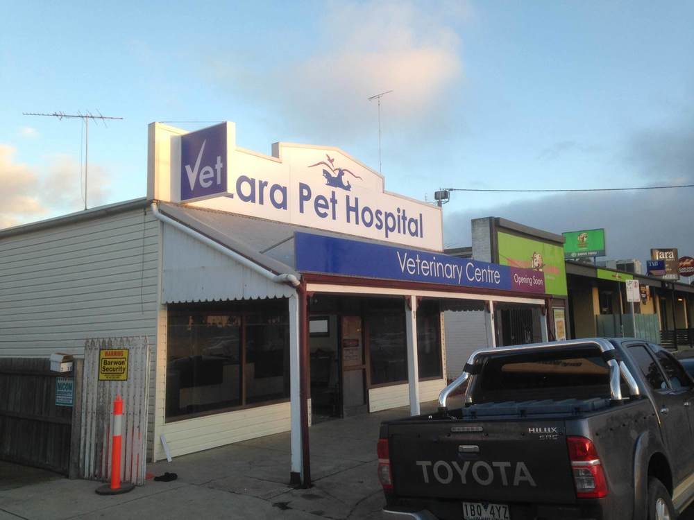 Lara-Pet-Hospital-Signs-Geelong.jpg