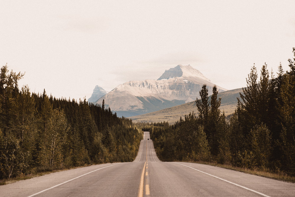 september — went on a last minute road trip to banff, alberta, canada