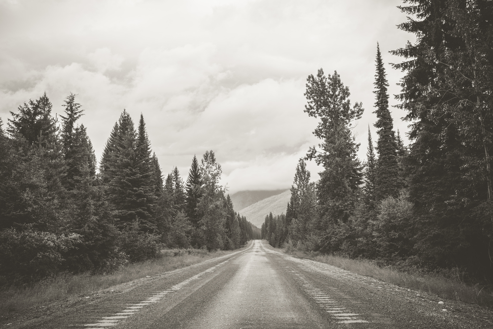 long road (1 of 1).jpg