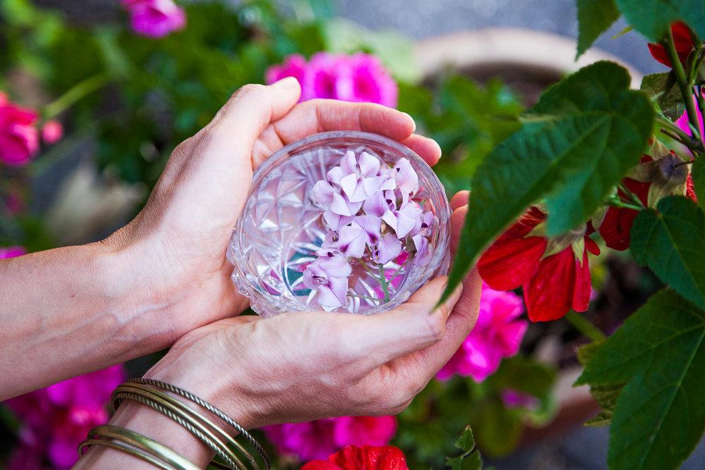 Healing-Essence-IMG_2771.jpg