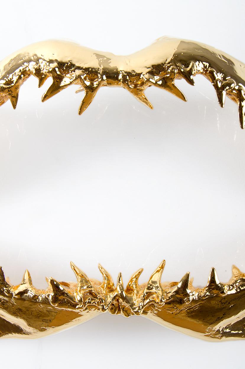 jake-lamagno-gold-shark-jaw-onwhite-2.jpg