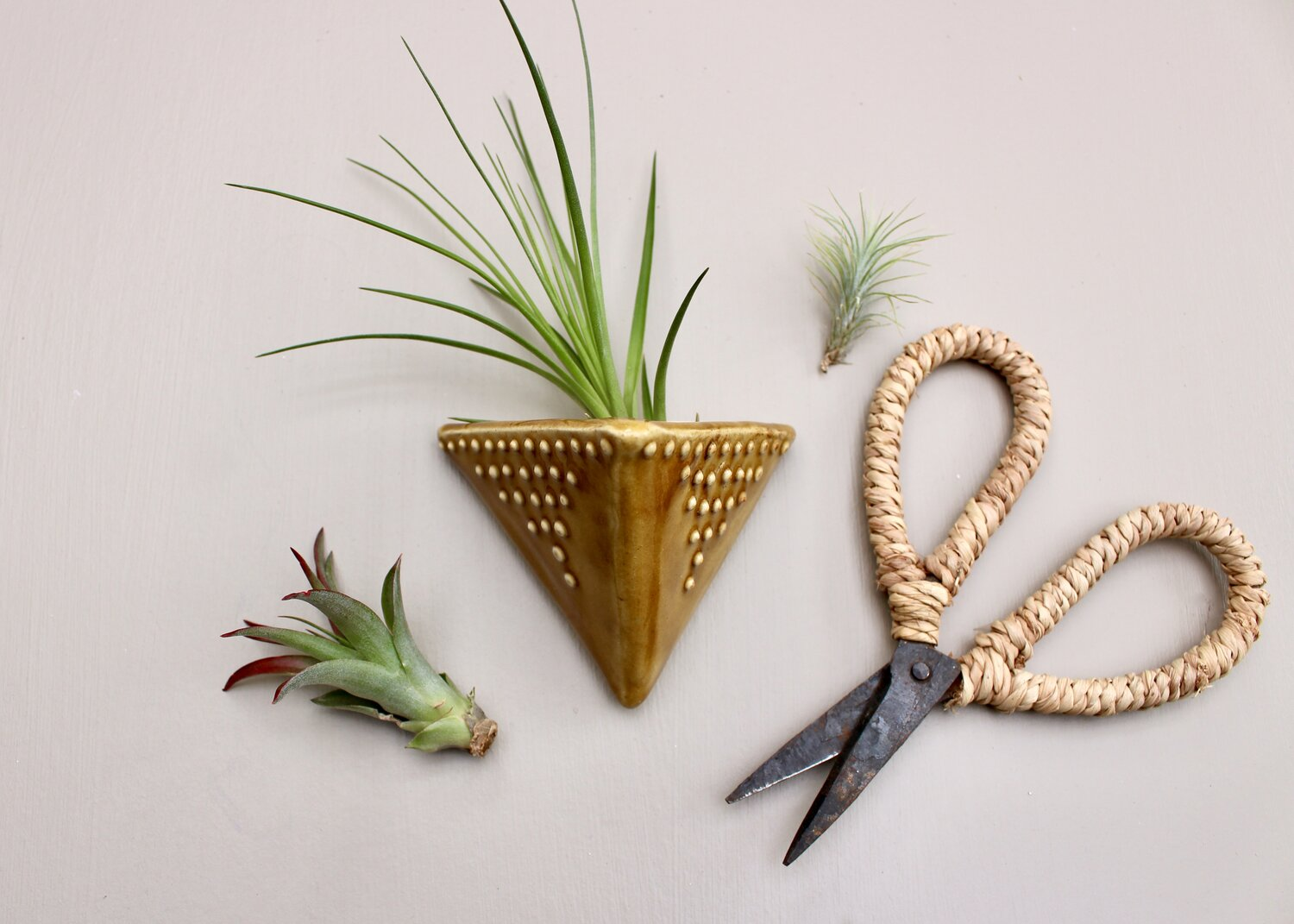 Small Gift Hand Made Ceramic Wall Pocket Free shipping. Unique Airplant Air Plant Holder
