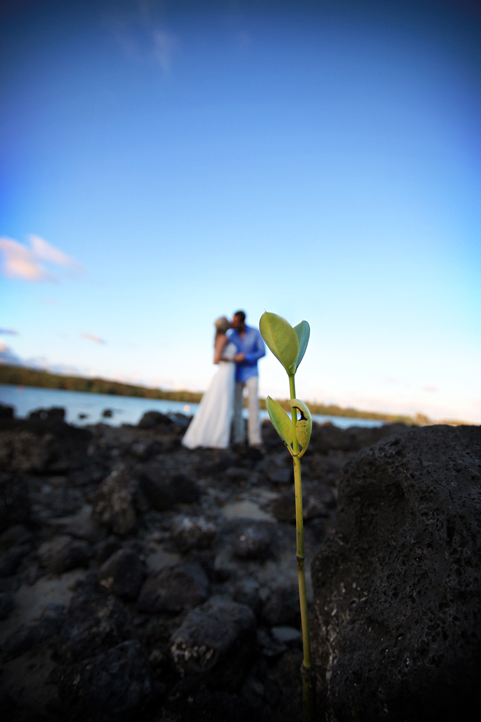 Mauritius_wedding_photographers_beachcomber_destination_wedding_Photography (156).jpg
