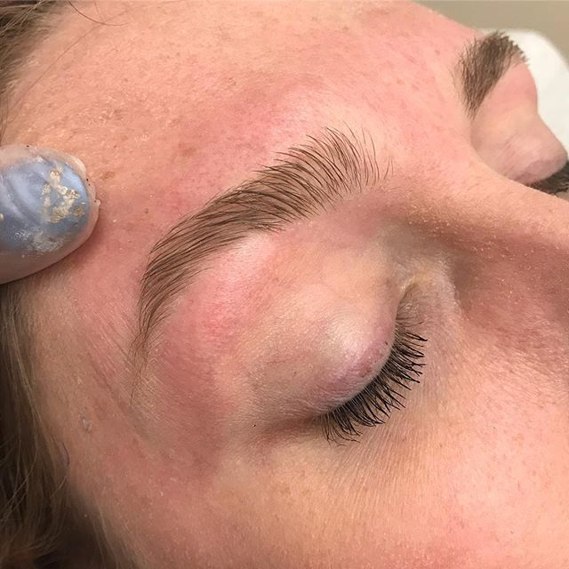•|| 6mos rehab client progress loading...hide the tweezers and ride your patience and you'll be your own// #browgoals . . . . . . . #brows #dcbrows #goodbrowday #dmvbrows #dcesthetician #dcwaxing #dmvwaxing #browartist #ibrowpro #esthetician #dmv #dc #browsworldwide #browtint #dmvbrowwax #marylandbrows #dmvmua #browshaping #masterbrowartist #beautypro #archaddicts #kbb #baltimorebrows #perfectbrows #satinsmooth #mdbrows #mobilebrows #fluffybrows #naturalbrows