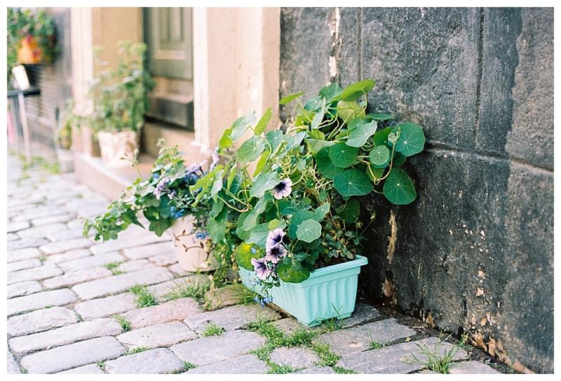 Elisa Loechel Photography_0069.jpg