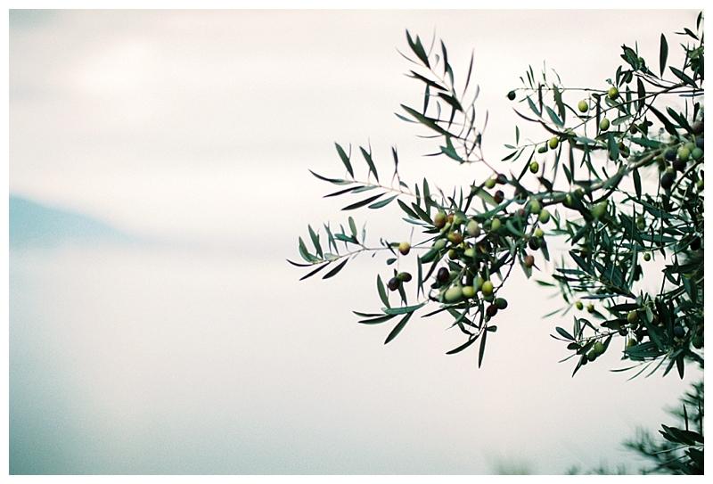 Elisa Loechel Photography_0594.jpg