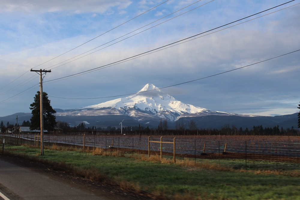 Mt. Hood: taken out of the sun-roof on our way to the mountain.