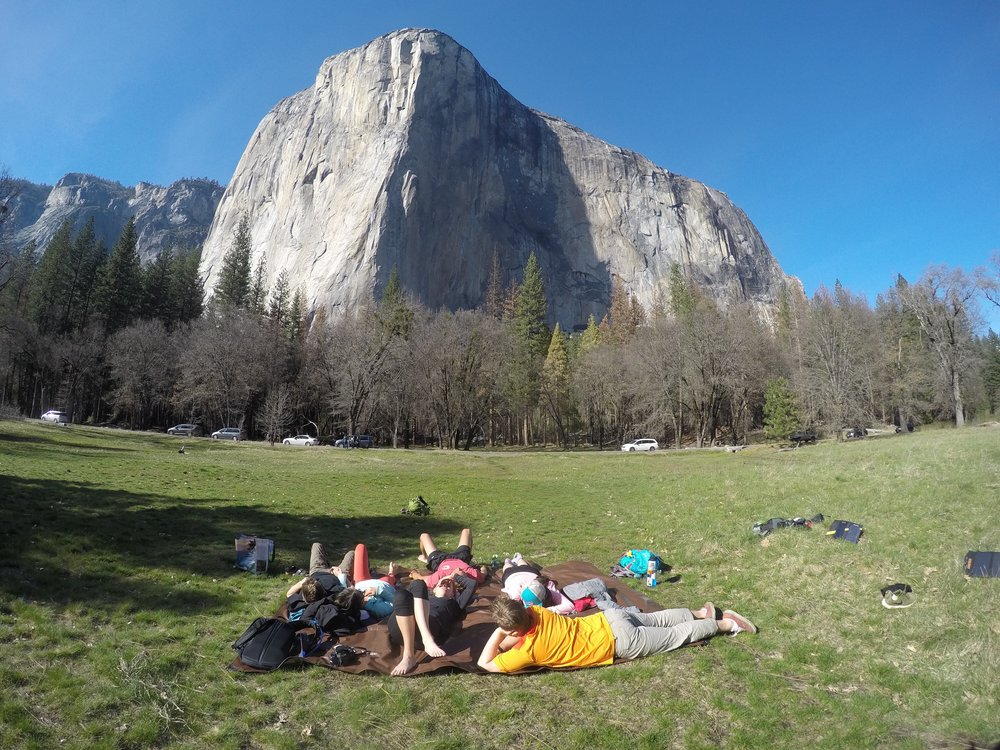 Hanging out in El Cap meadows