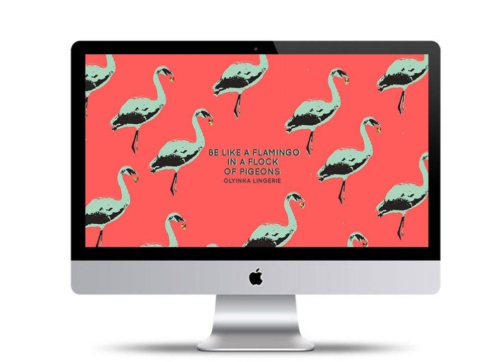 mac mockup.jpg