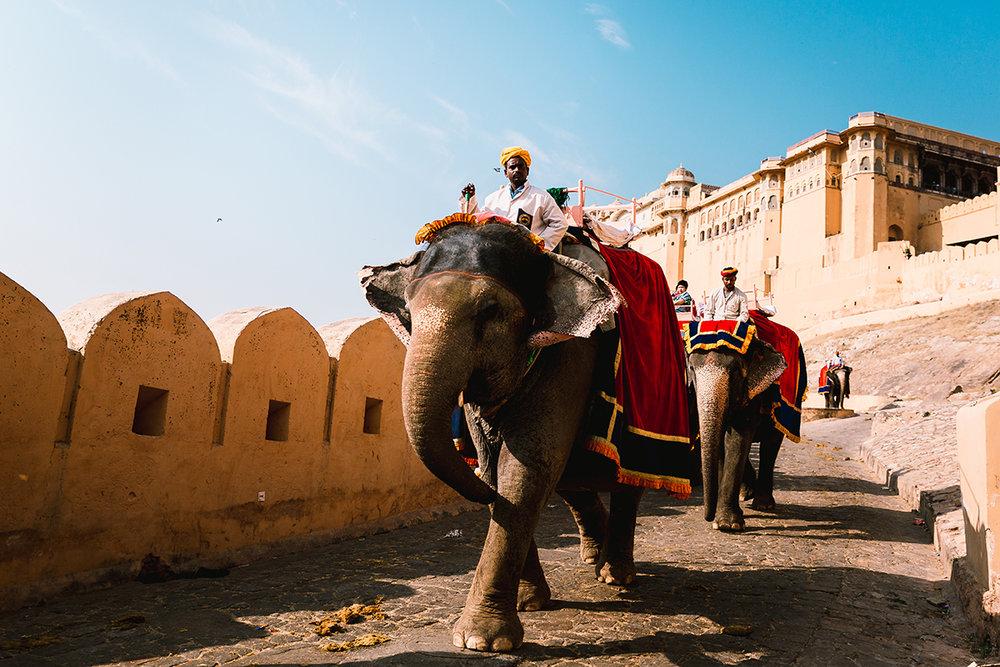 travel-photographer-india.jpg