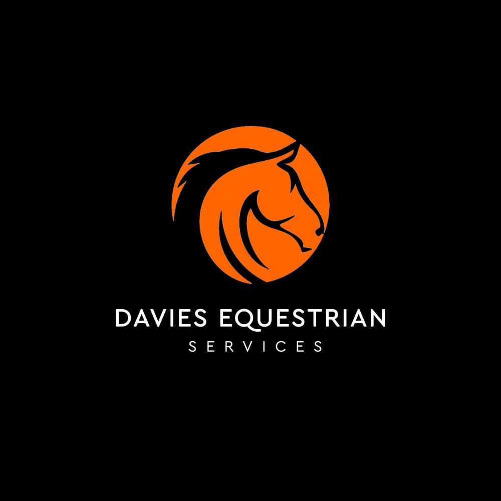 DES Logo1.jpg