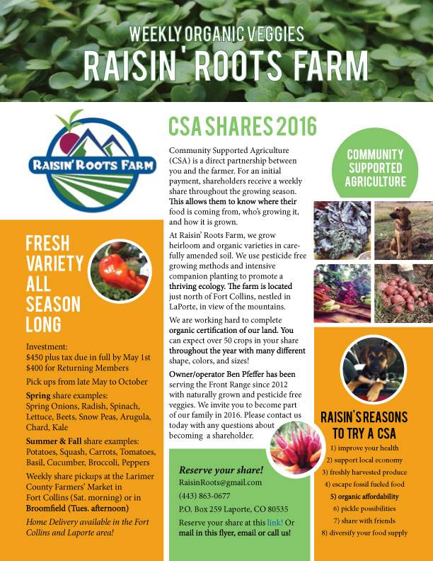 Raisin Roots Farm CSA Flyer