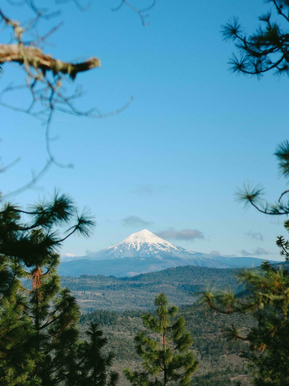 View of Mt. McLoughlin from Roxy Ann Peak