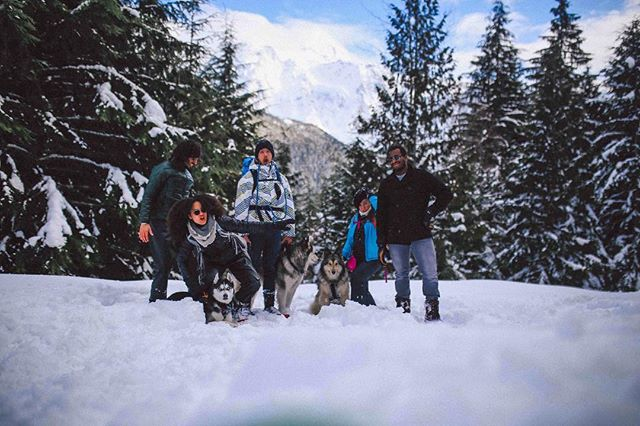 """Winter Is Coming""⁣⠀ ⁣⠀ or⁣⠀ ⁣⠀ Adventures in trying to get a photo with five snowshoeing humans and three off-leash #snowdogs!⁣⠀ .⁣⠀ .⁣⠀ .⁣⠀ .⁣⠀ #travel #travelblogger #offthebeatenpath #wanderlust #nomadness #traveladdict #exploremore #slowtravel #liveinspired #passionpassport #letsgosomewhere #pursuepretty #seekthesimplicity #forceofnature #pnwlife #pnwonderland #mountbaker #mountbakerskiarea #hikingwithdogs #optoutside #adventureisoutthere #washingtonexplored #wanderwashington #diversifyoutdoors #melaninbasecamp #theadventuregap #diversityinadventure #themountainsarecalling #winteriscoming"