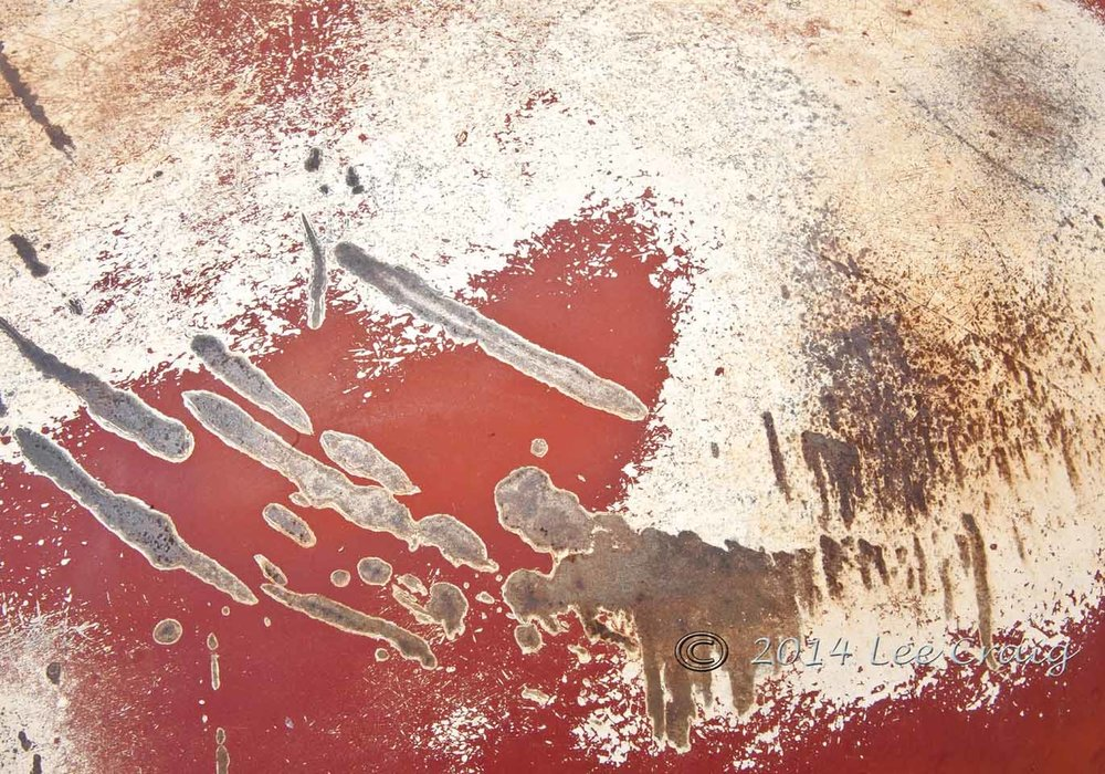 Amoeba  Amoebae Abstract.jpg
