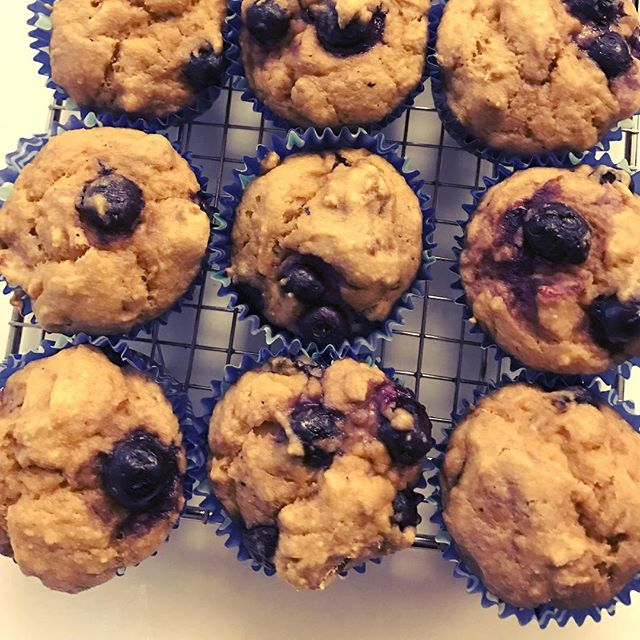 Lemon blueberry tahini protein muffins (8g per muffin) 100% whole grain, refined sugar free, and only good fats! #bakingspree #oink #imagoodfat