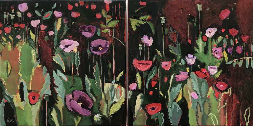 Diptych: Opium Poppies in the Oxford Botanic Gardens