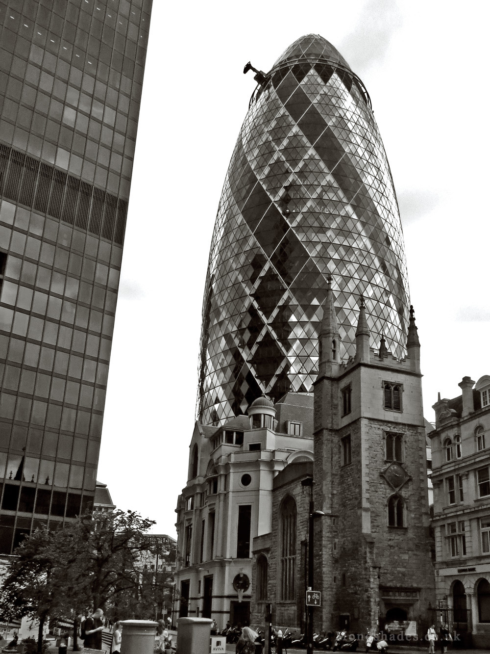 The Gherkin   Photo by Teresa Jambur