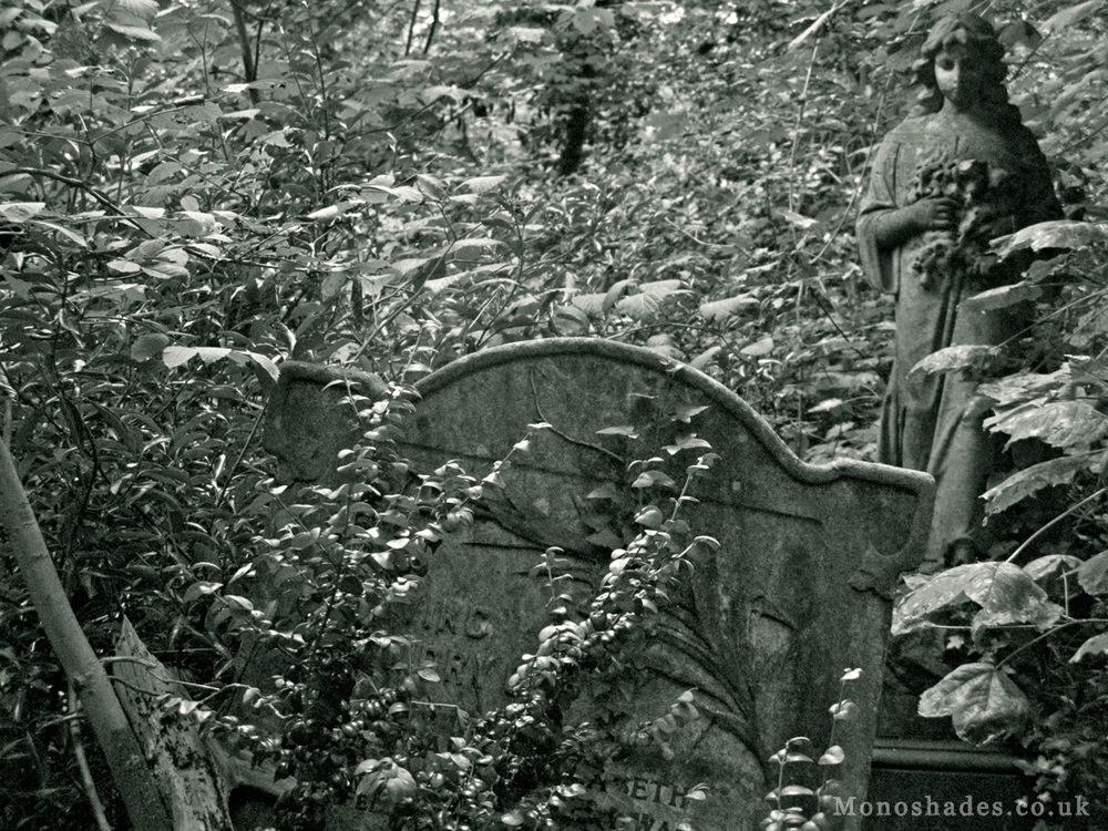 Nunhead Cemetery   Photo by Teresa Jambur