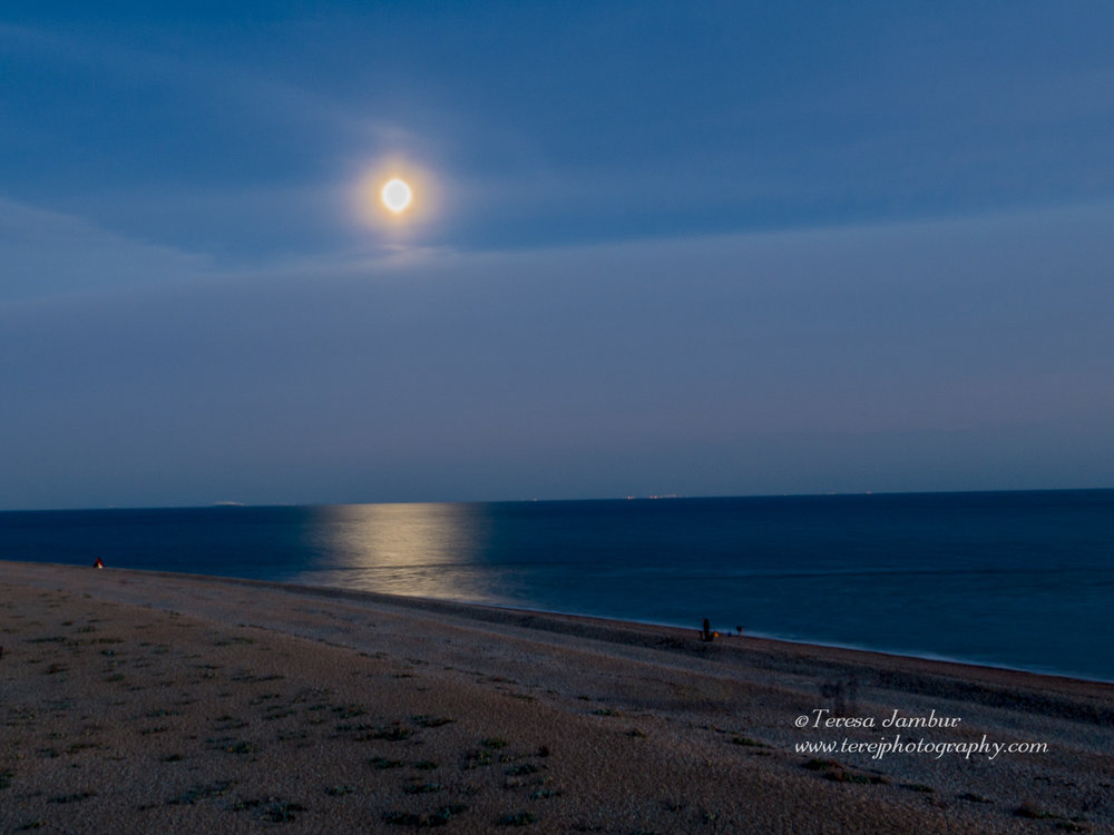 Dungeness-beach-night.jpg