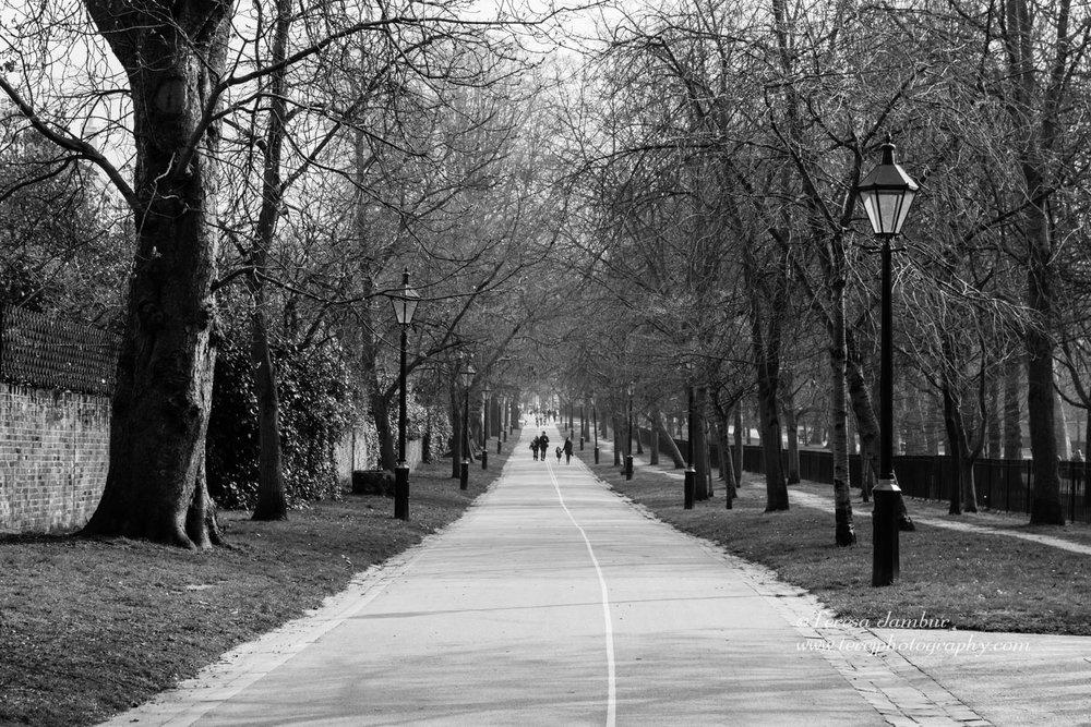 London-Holland Park.jpg