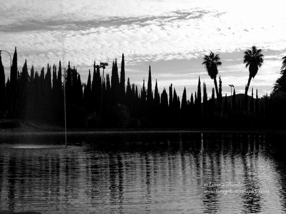Spain-Andalucia-Malaga (2).jpg