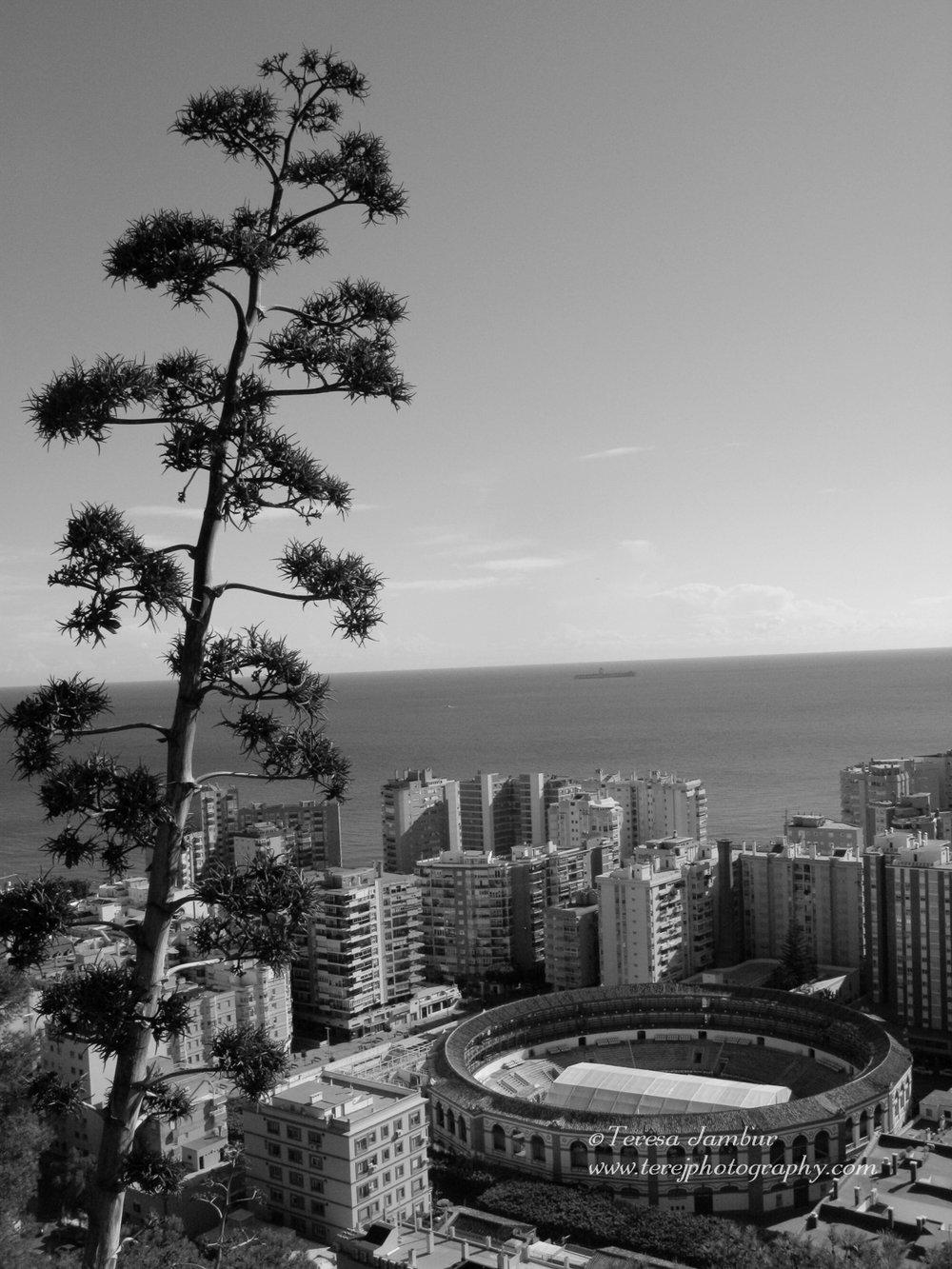 Spain-Andalucia-Malaga.jpg