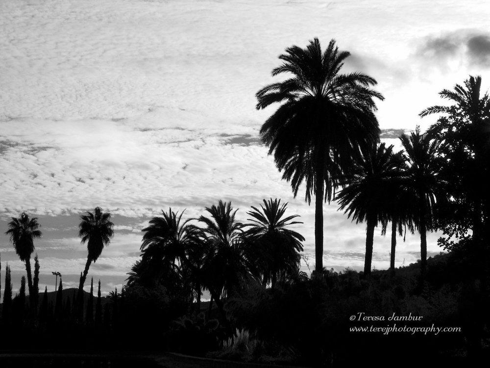 Spain-Andalucia-Malaga2.jpg