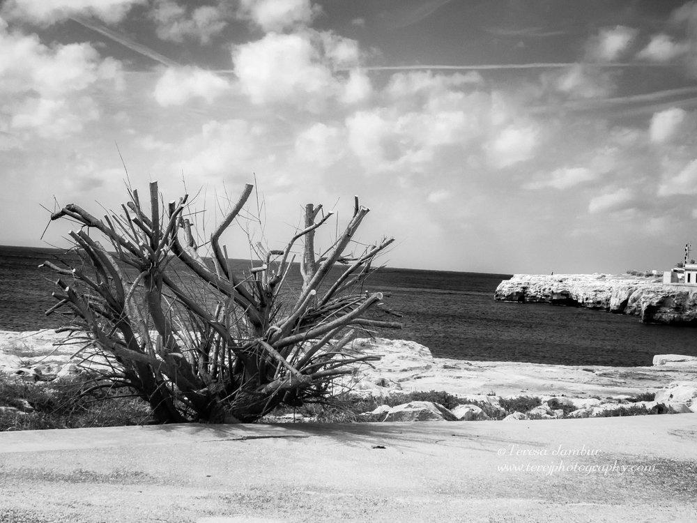 Menorca-Ciutadella-Black-and-white-1.jpg
